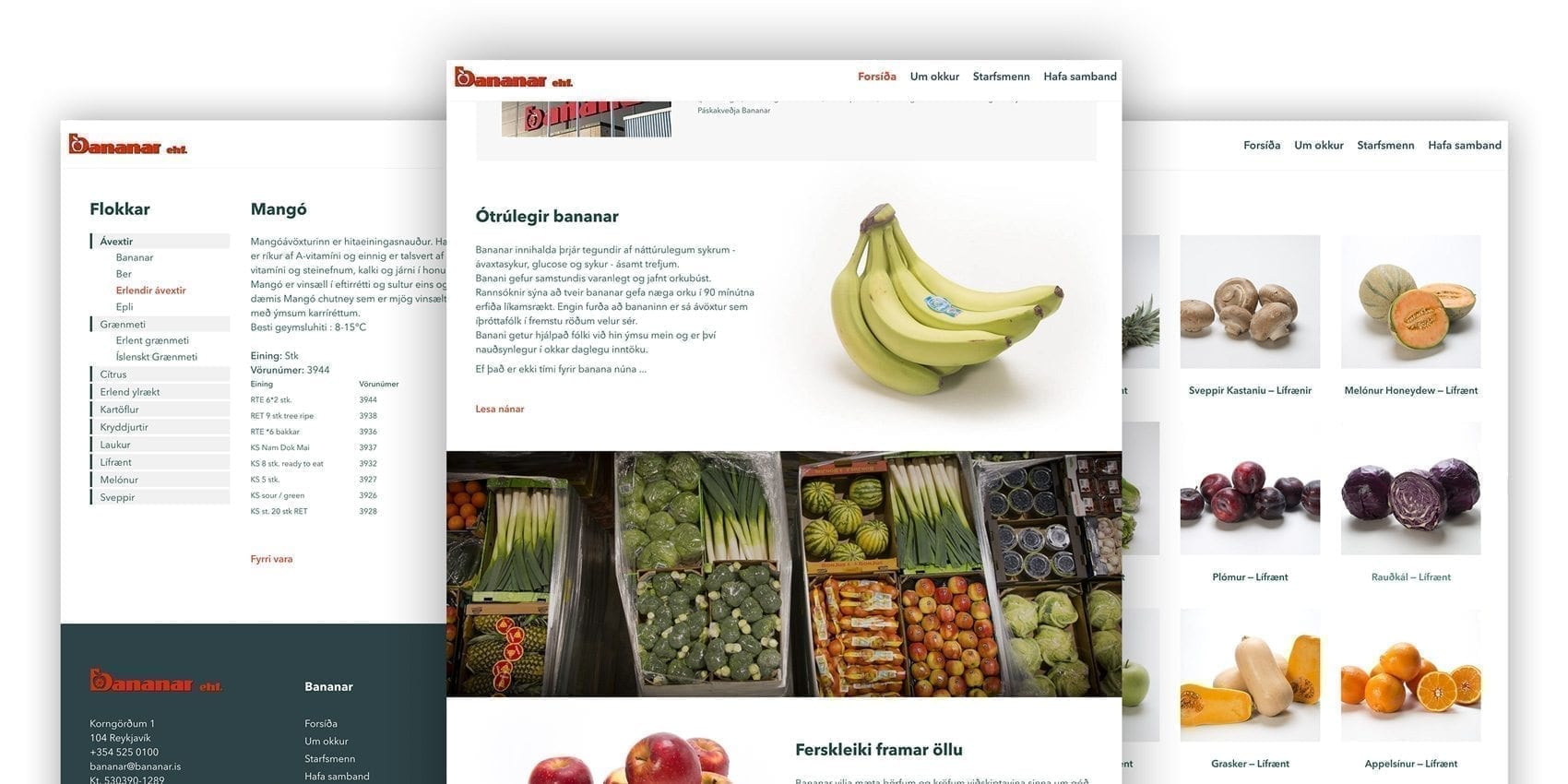 A mood board of Bananar website